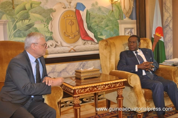 Head of State receives director from Total